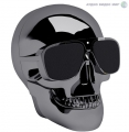 Акустика Jarre AeroSkull nano Chrome Black