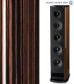 Акустика T+A Criterion TCD 310 S High Gloss Macassar Ebony