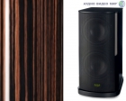 Сабвуфер T+A Criterion TCD 610 W High Gloss Macassar Ebony